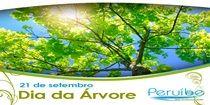Em comemoração do Dia da Árvore, Peruíbe fará trabalho de conscientização nas escolas municipais